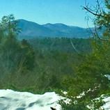 Biltmore in the Winter