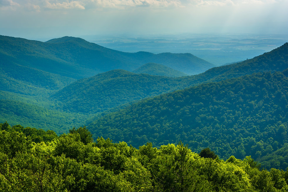 View of the Blue Ridge Mountains from Bl
