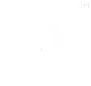 VB Logo 3 White_edited.png