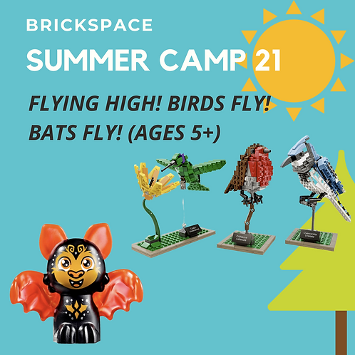 Flying High! Birds Fly! Bats Fly! (Ages 5+)  JULY 12-16, 12:30-3:30pm