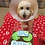 Thumbnail: Sorry About Your Balls - Get Well Soon Treat Box - Tennis Balls Grain Free