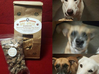 Casper and Faffy were super happy for their new treats