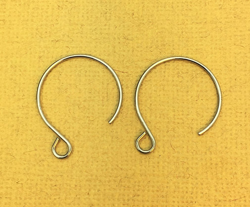 Stainless Steel Hoop Ear Wire - 20 Pieces