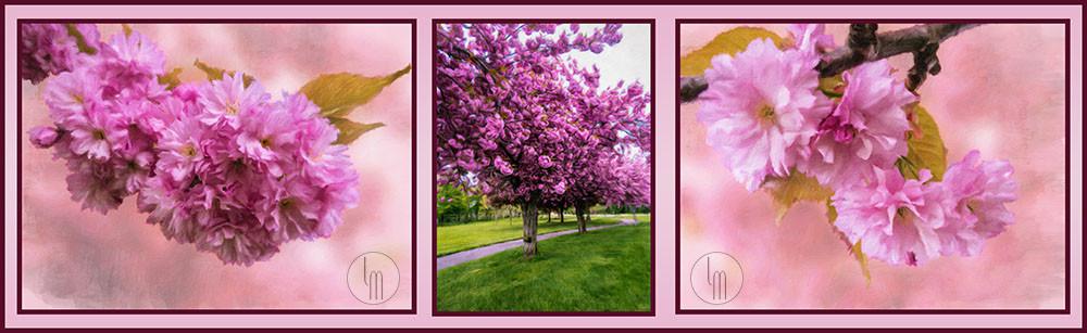 Horizontal Triptych