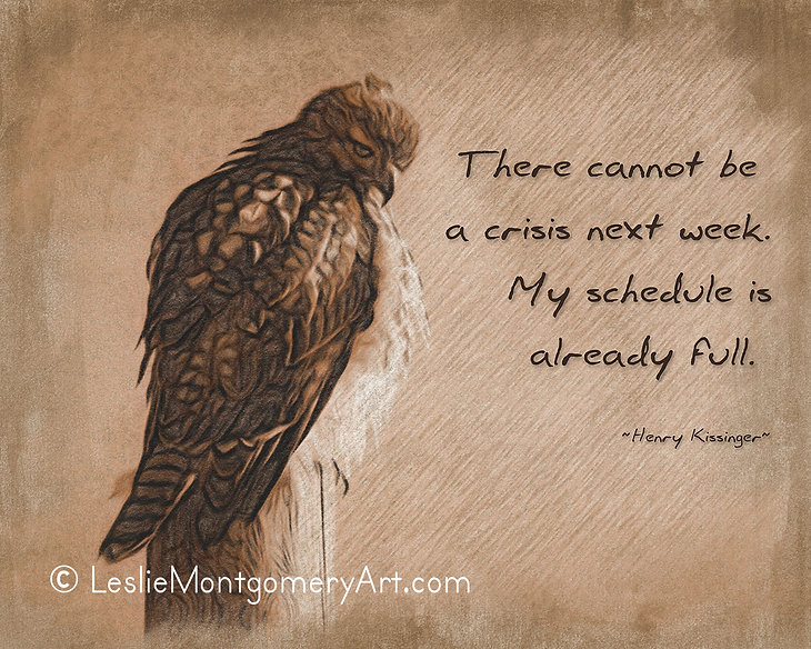 'No Crisis This Week' by Leslie Montgomery
