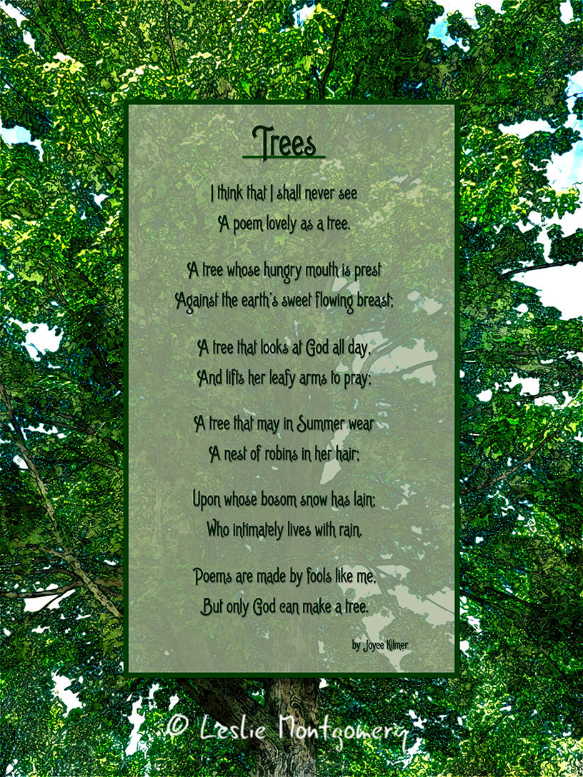 A famous poem about trees by Joyce Kilmer