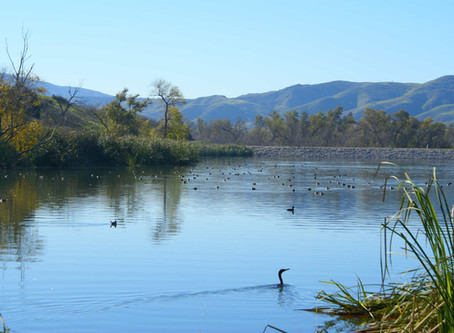 Op-Ed: Long Road Still Ahead to Fund New California Water Storage Projects