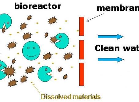 The City's Roadmap to Selecting a Membrane Bioreactor