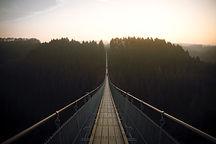 Forest Suspensionn Bridge