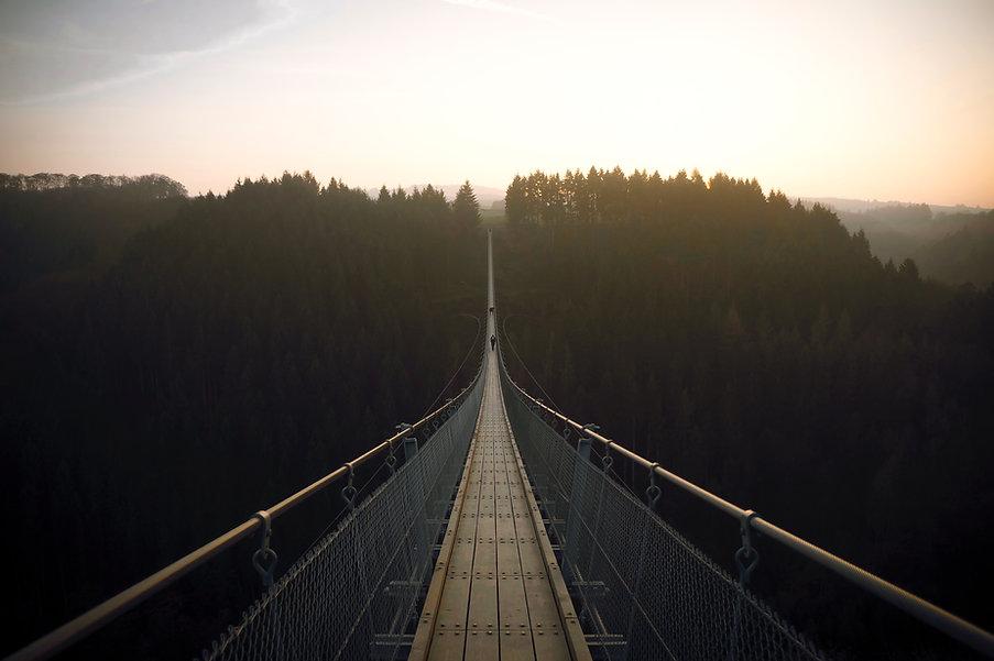 Wald Suspensionn Brücke