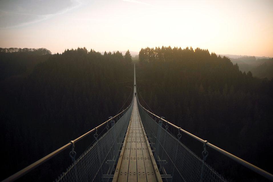 Puente Suspensionn bosque