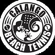logo-calango1.png