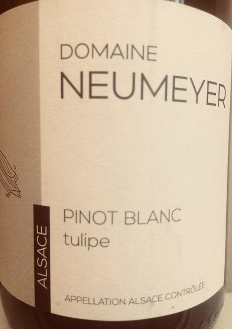 Pinot blanc, Domaine Neumeyer