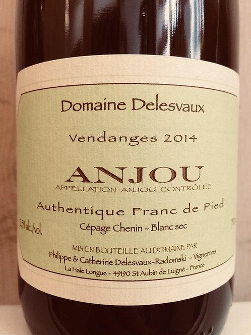 Anjou Authentique, Domaine Delesvaux