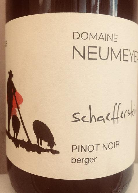 Pinot Noir Schaefferstein