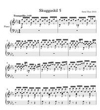 Review of Skuggaskil