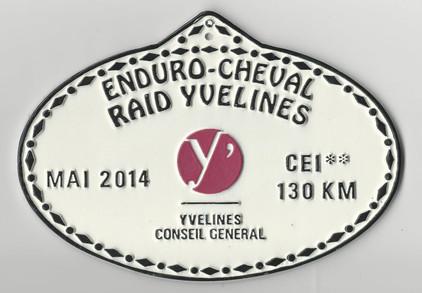 2014_Raid_Yvelines_Conseil_Général_130km.jpg