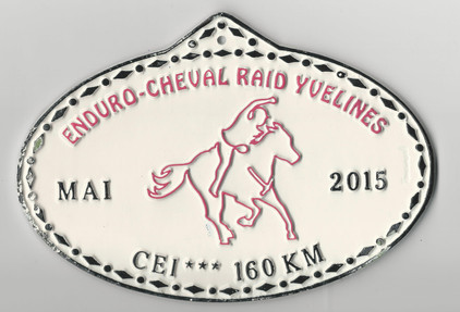 2015 New Raid Yvelines.jpg