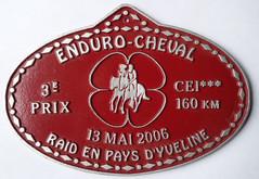 2006 Raid en Pays d'Yvelines.jpg