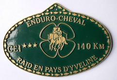 2004 Raid en Pays d'Yvelines.jpg