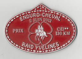 2012 Raid Yvelines.jpg