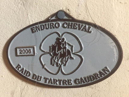 2006 Raid du Tartre Gaudran2.JPG