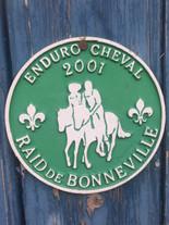 2001 Raid de Bonneville.JPG