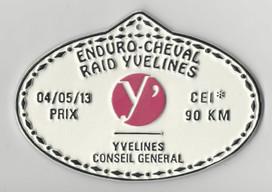 2013_Raid_Yvelines_90km_Conseil_Général.jpg