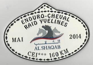 2014 Raid Yvelines Al Shaqab 160km.jpg