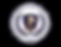 onu_logo-CISMUN1-580x448.png