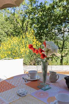 Terrasse Cyprès terrasse fleurs