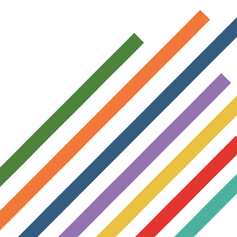 IBM Digital Services Group