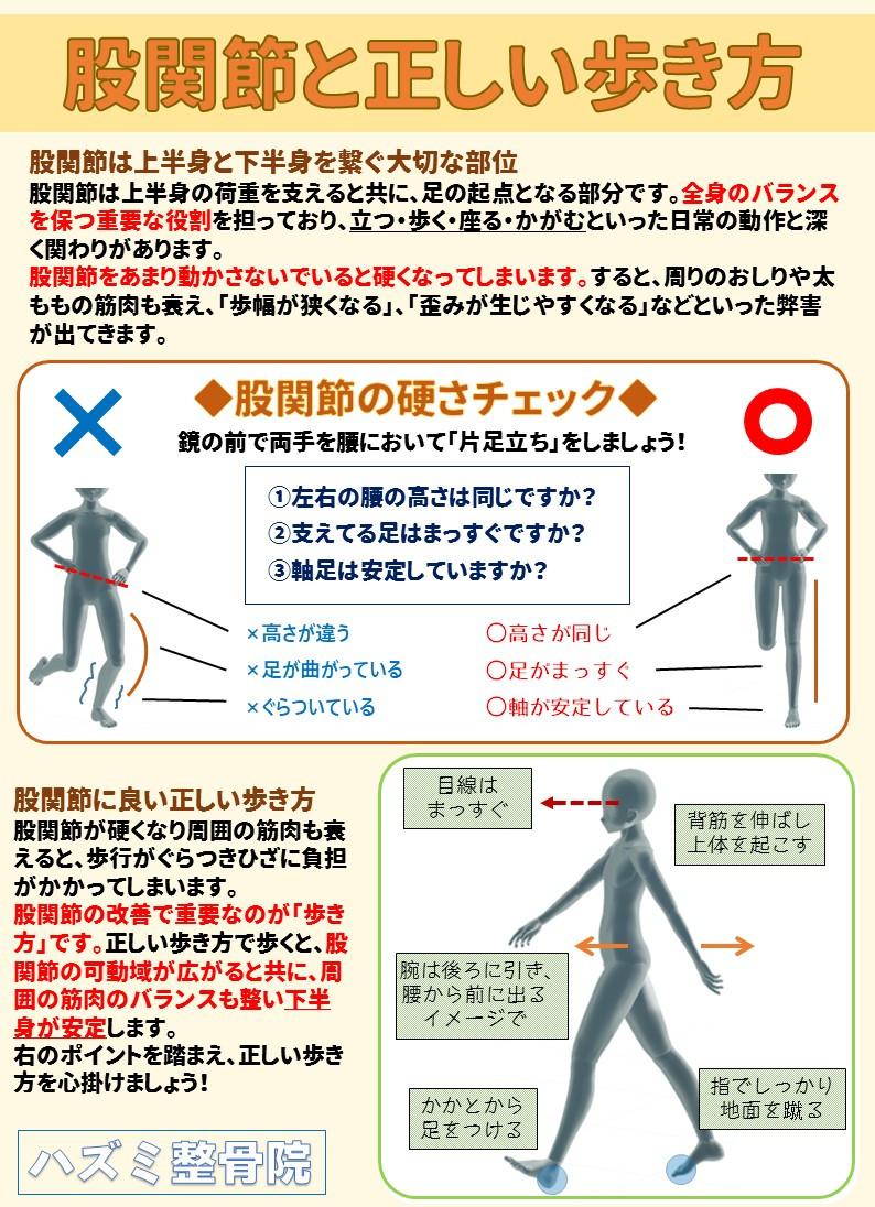 股関節と正しい歩き方