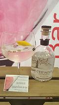 """Gin Tonic avec le gin Caennais """"C'est Nous"""""""