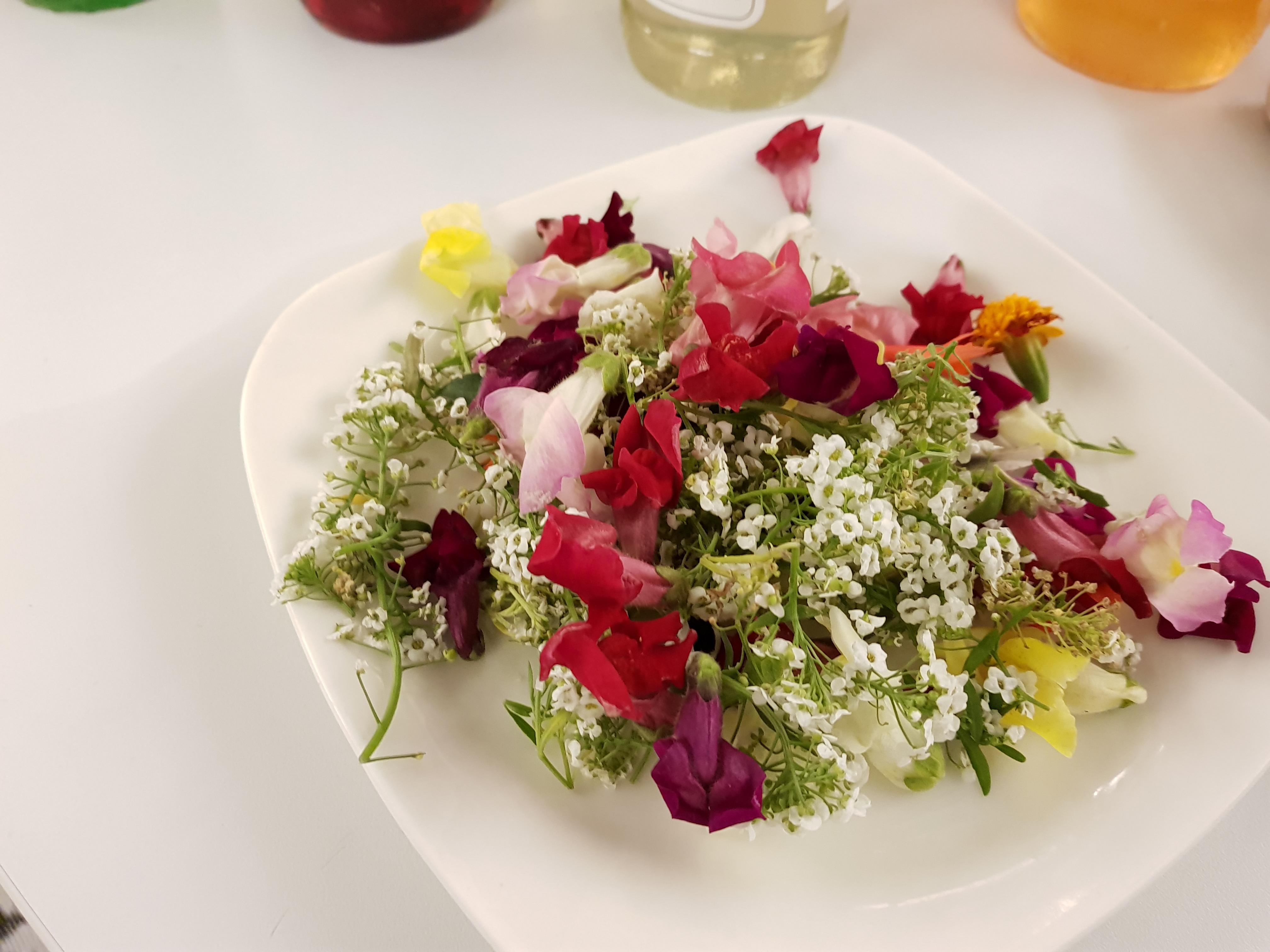 Fleurs Koppert Cress ANA Distri