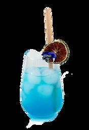 Blue bird - Blue lagoon - Bar à domicile