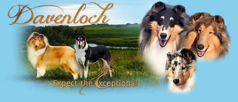 New Davenloch Logo.jpg