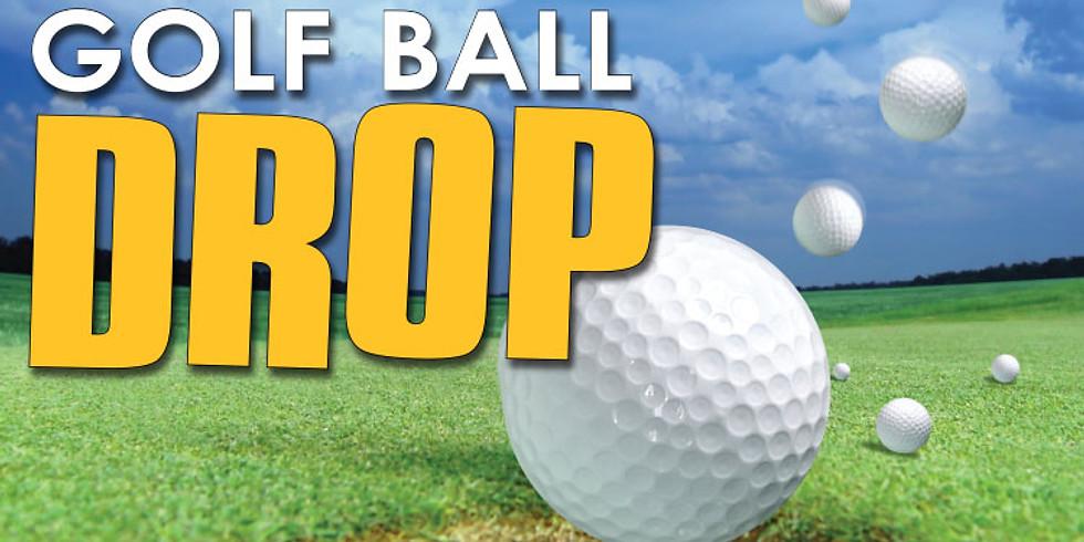 RDH12 Fund For Sight Golf Ball Drop
