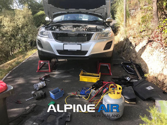 alpine car.jpg