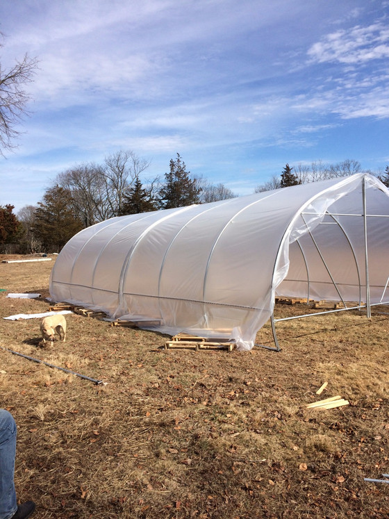 Johnny's Quick Hoops™ Gothic High Tunnel & DIY Seedling Heat Mat