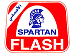 Flash_Logo_Brands.png