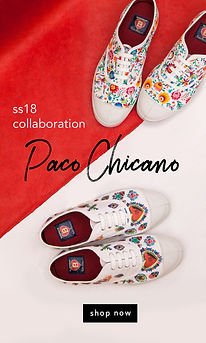 paco news2.jpg