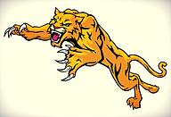 Wildcat - Mascot
