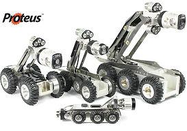 Proteus Crawlers