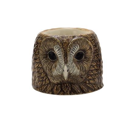 COQUETIER TAWNY OWL