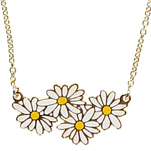 COLLIER DAISIES