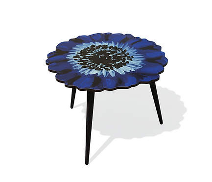 TABLE ANEMONE