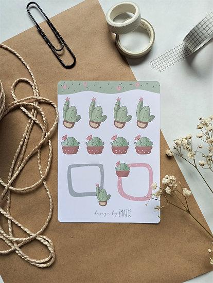 Kaktus Kića