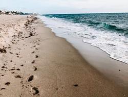 Miami and Beaches