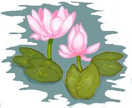 shade - lotus.JPG